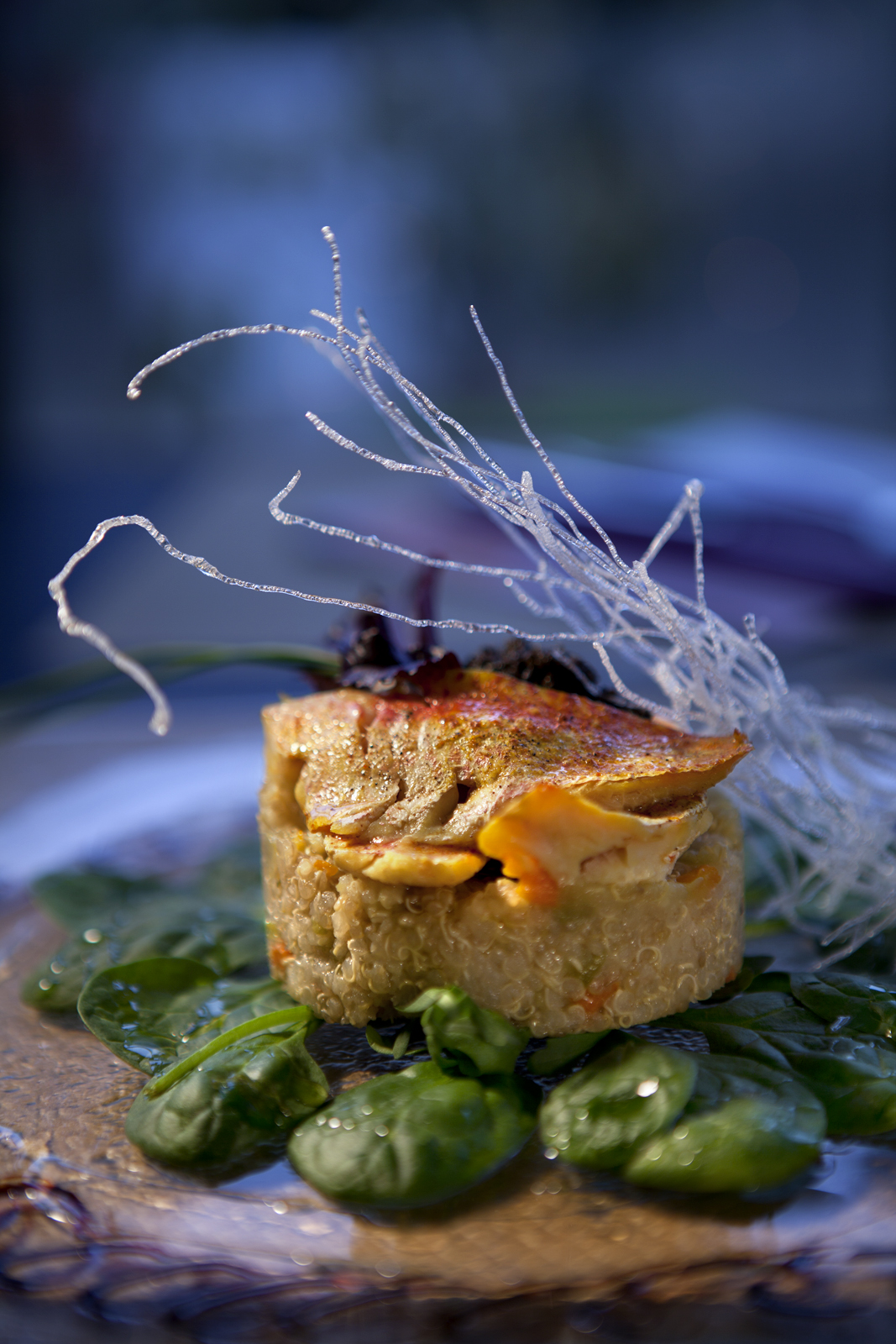 image culinaire, Photographe culinaire @ Montpellier